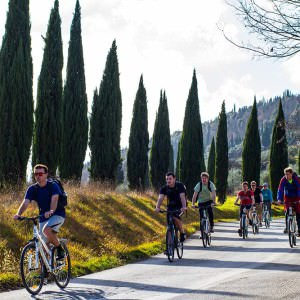 Florence by bike, Bike rental